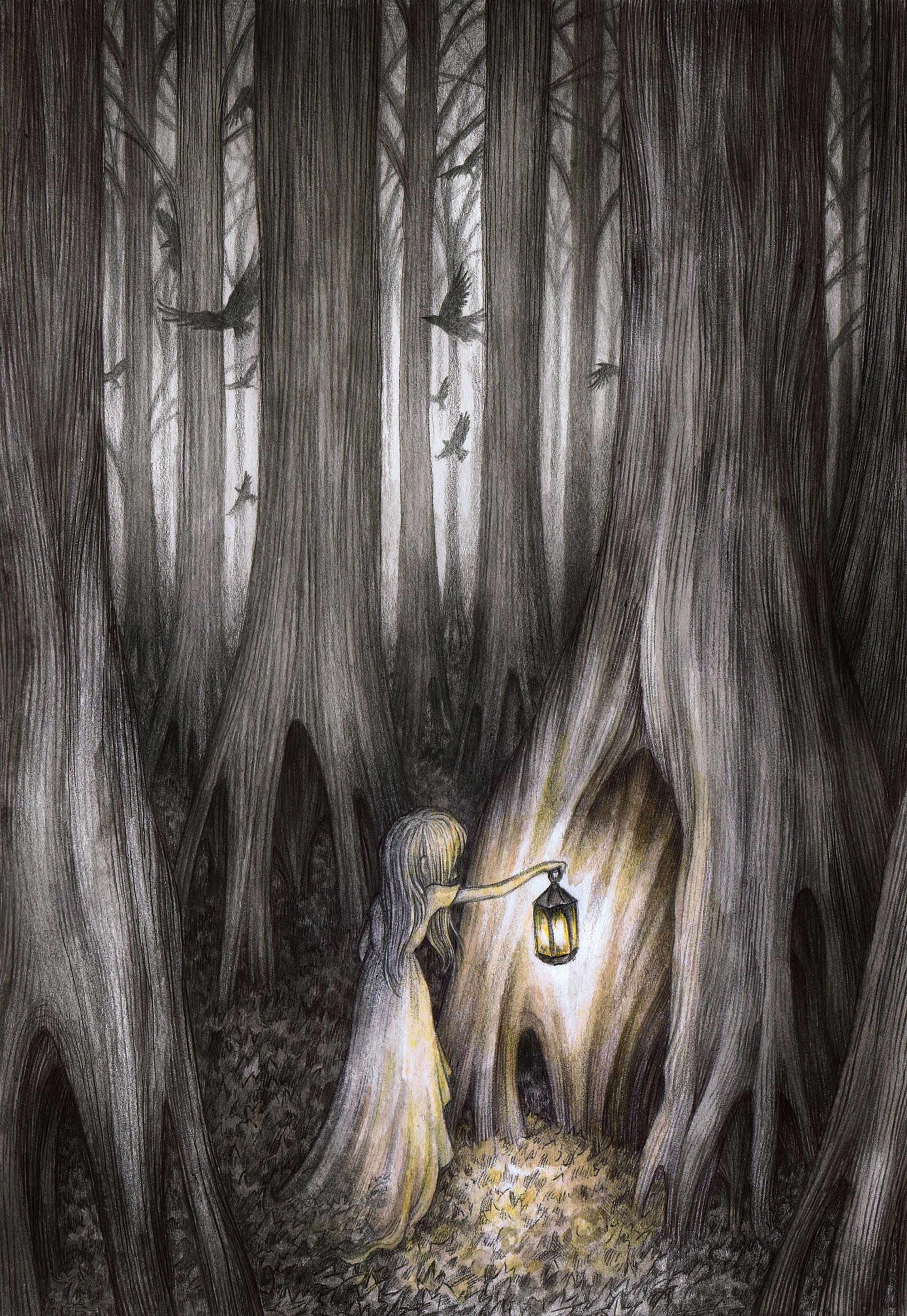 A LIGHT IN THE FOREST BY ADAM OEHLERS