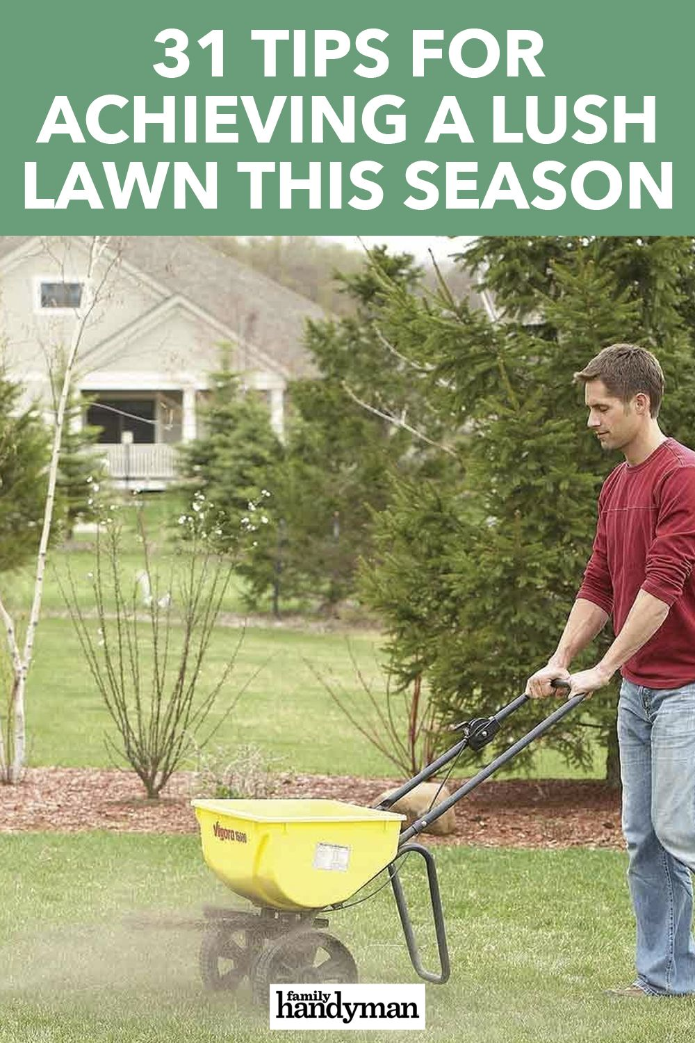 31 Tips For Achieving A Lush Lawn This Season In 2020 Lush Lawn Lawn Garden Hoe