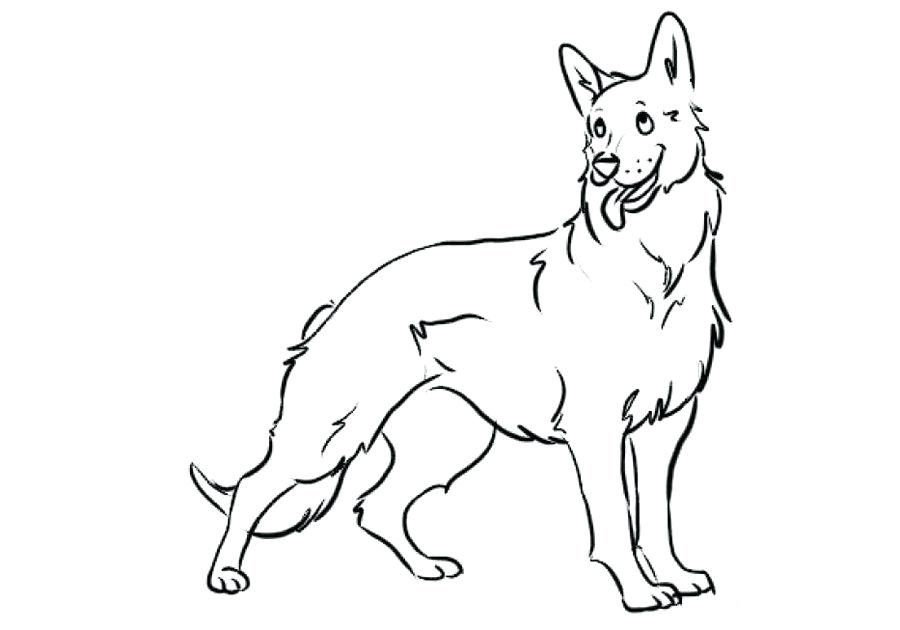 German Shepherd Coloring Pages German Shepherd Colors Puppy