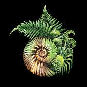 Watercolor prehistoric seashell with the fern branches growing out... #dinosaurillustration