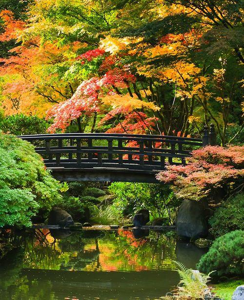 Japanese Inspired Garden In Grant Park: Portland Japanese Garden
