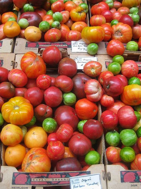 Brightly colored organic heirloom tomatoes at Farm Fresh To You