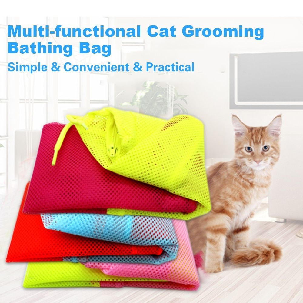 Pin on Products for cats
