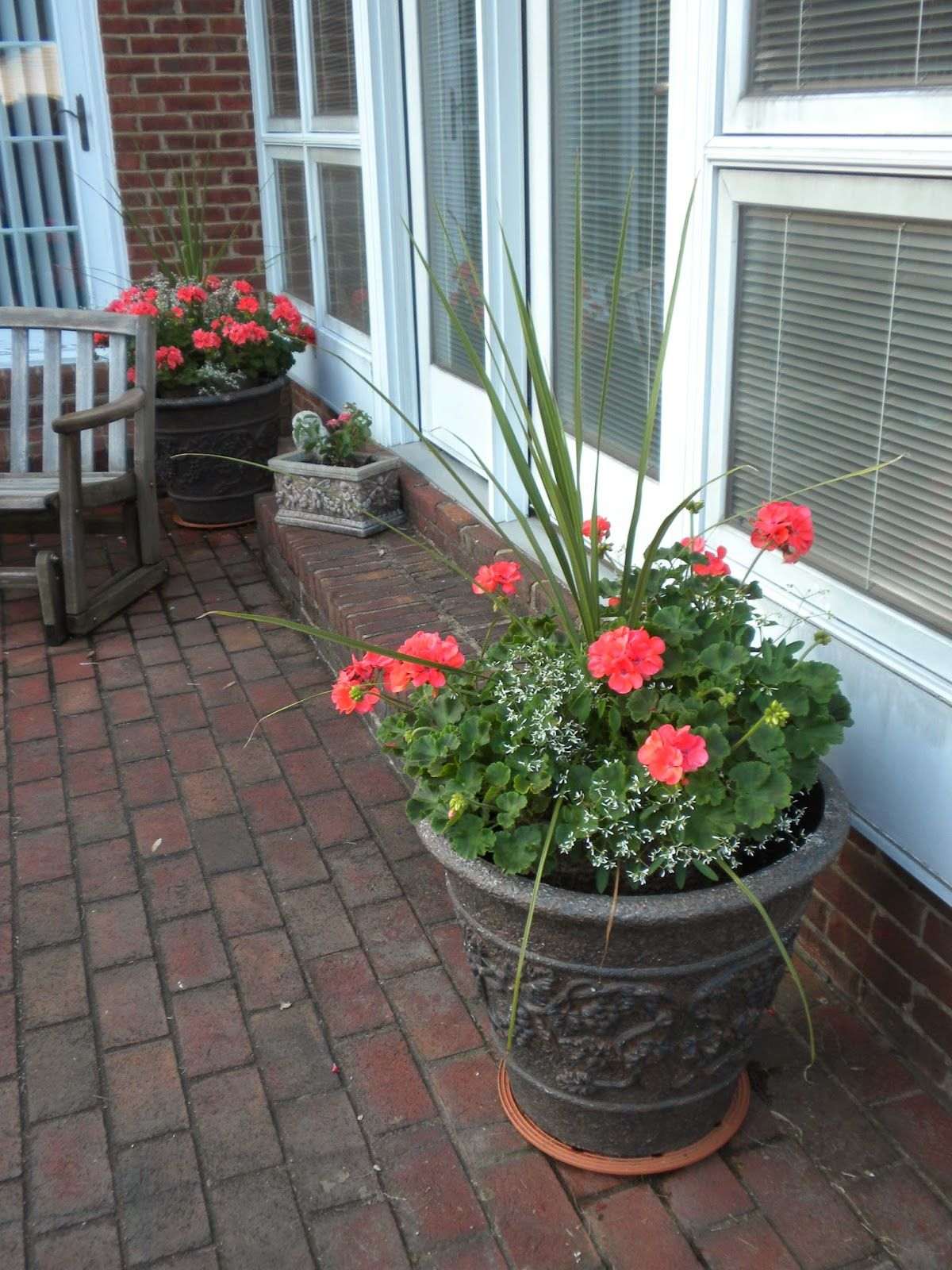 Panoply plan now annual flower container ideas gardeningyard annual flower container ideas izmirmasajfo Image collections