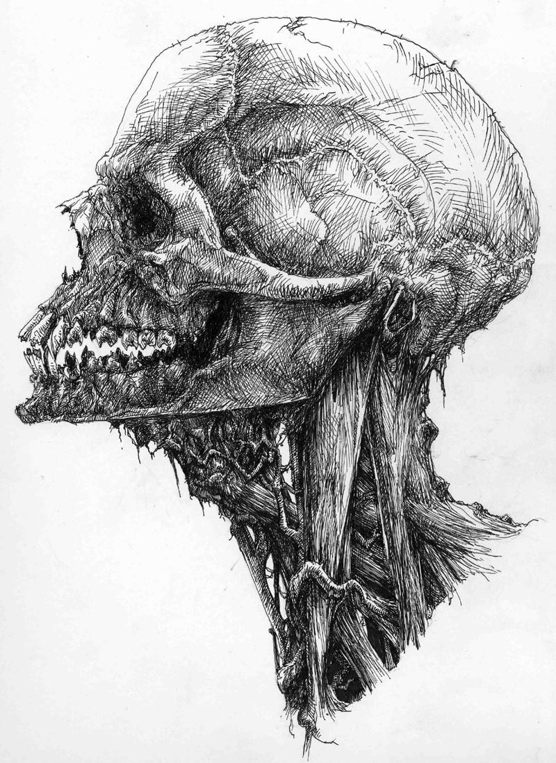Zombie | Project 4: Music Video | Pinterest | Skull drawings ...