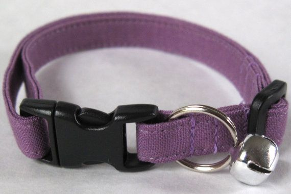 Plain Jane in Imperial Purple Cat Collar - Customized, Optional Personalized