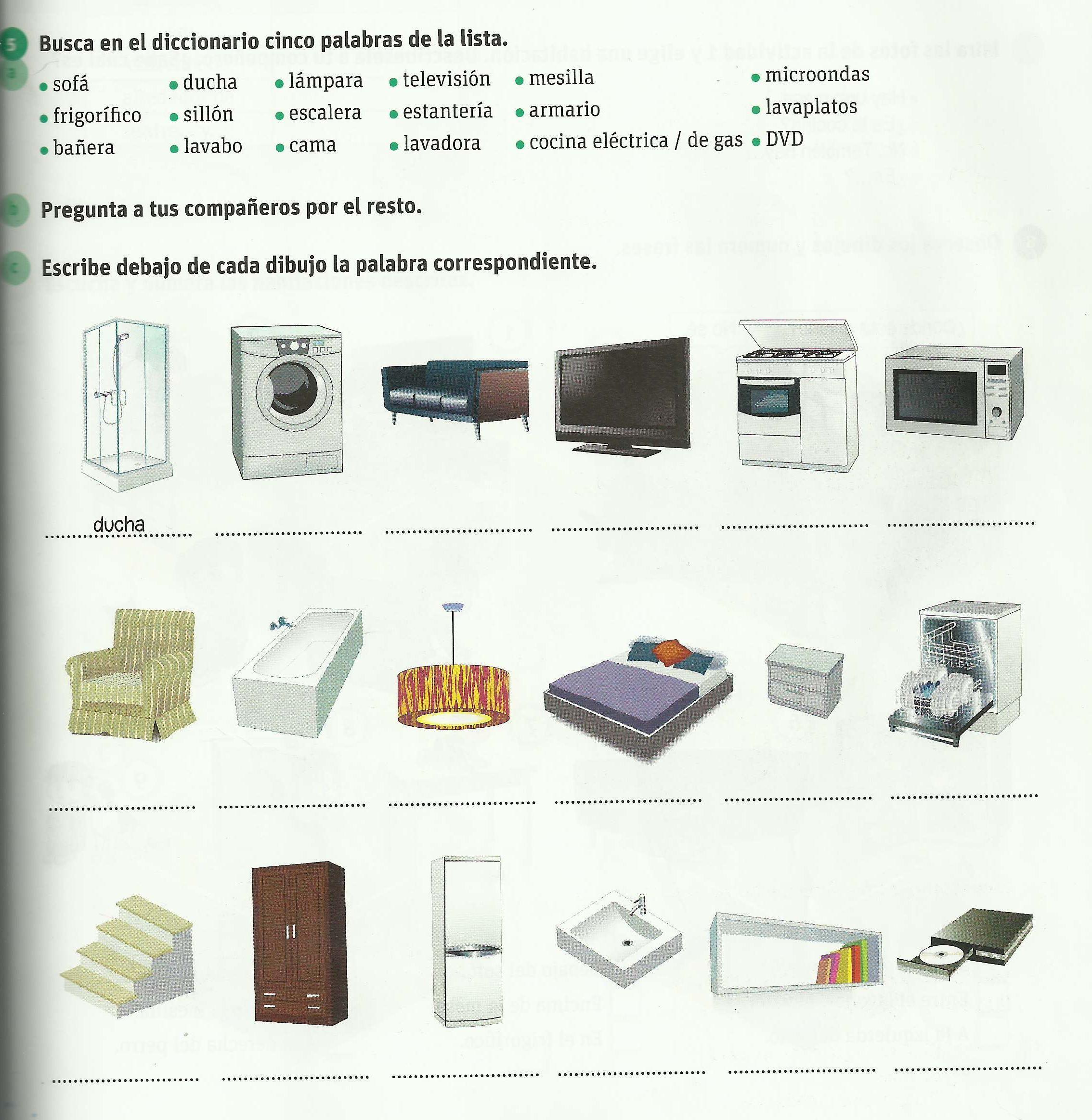 MiCAsa-ELEpag85