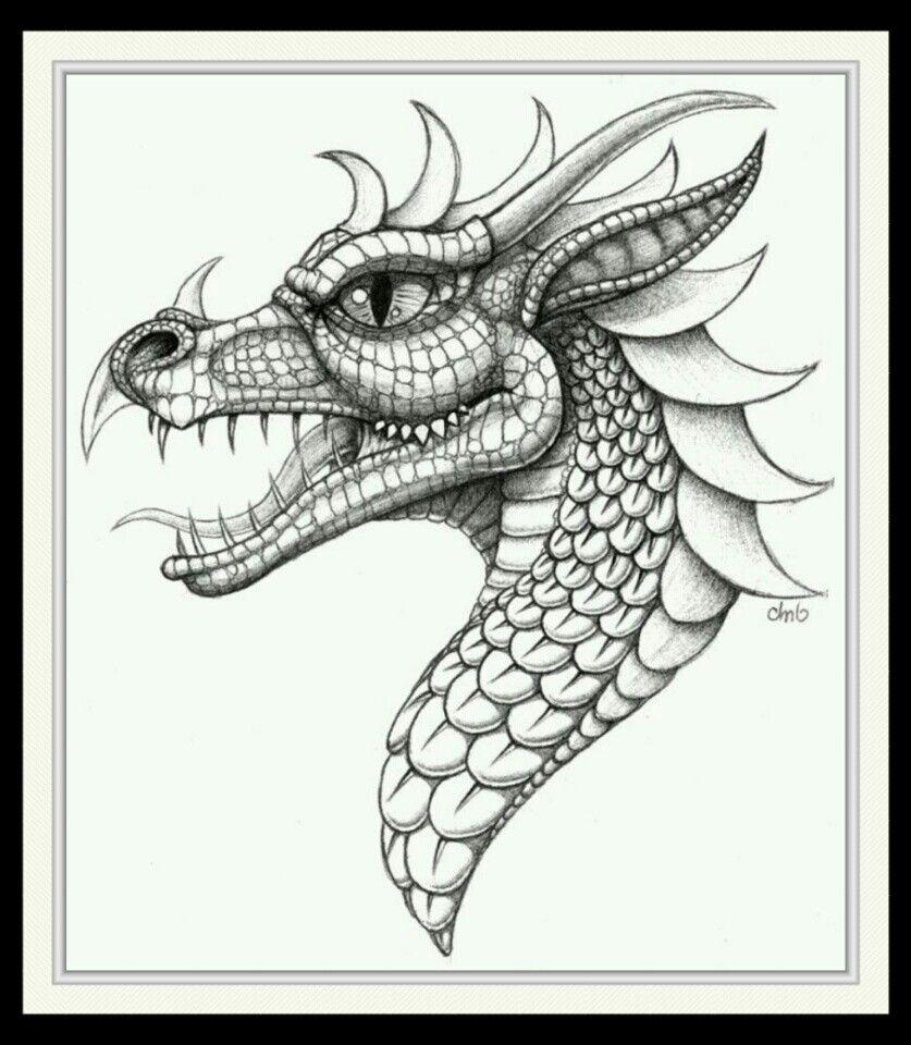 Cabezas De Dragones Para Tatuar pin de mirna cadena en draw | dibujos, tatuaje de dragón