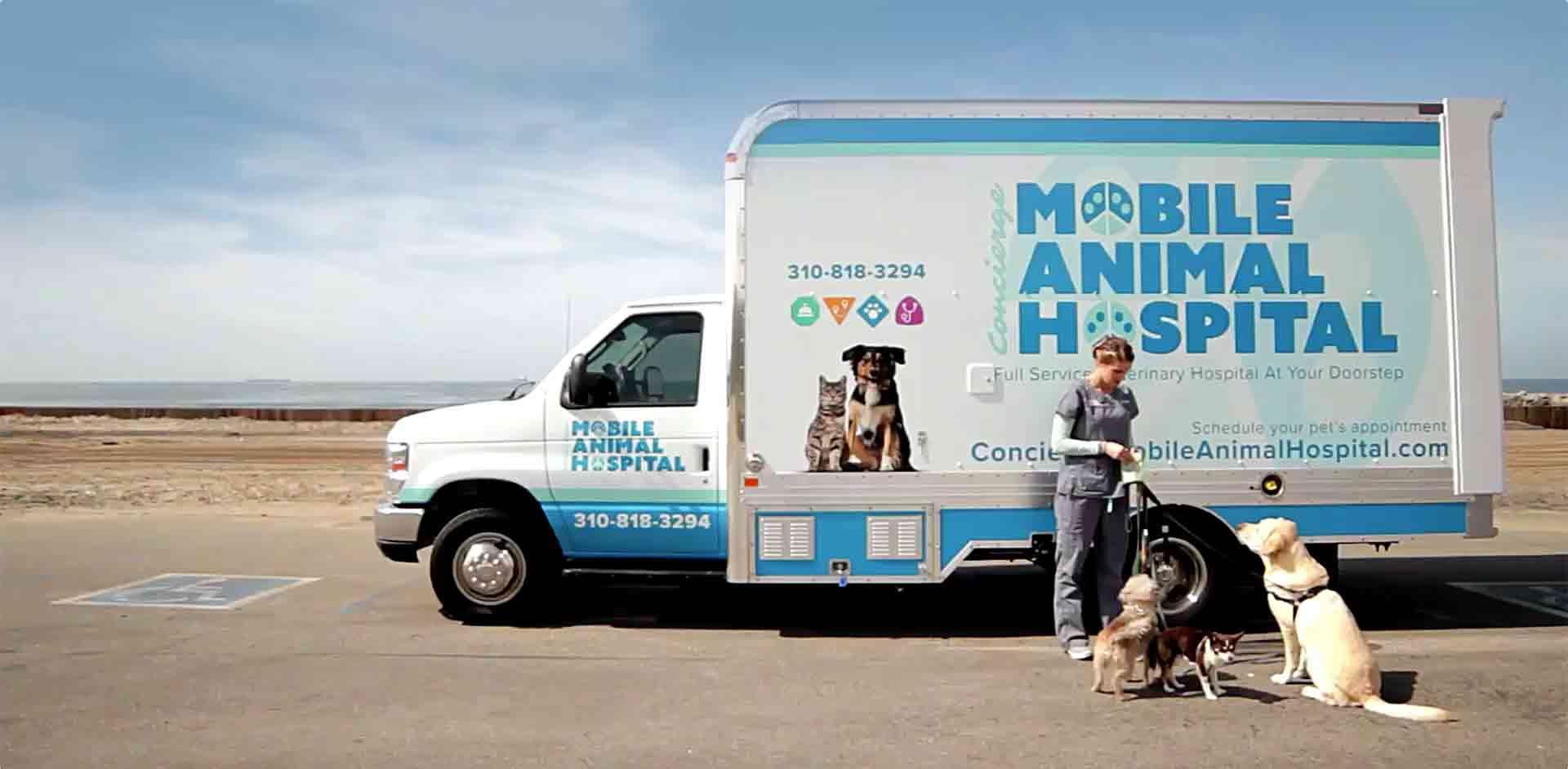 South Bay, CA Mobile Veterinarian Concierge Mobile