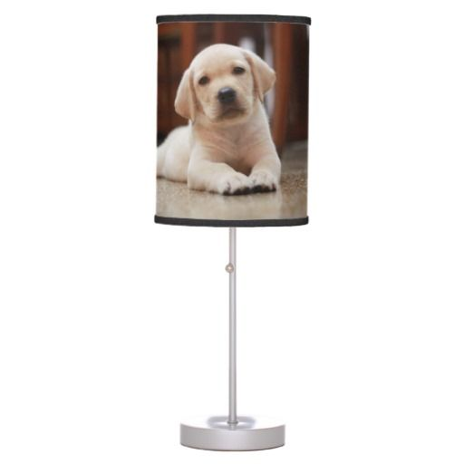 Baby Yellow Labrador Puppy Dog Laying On Belly Table Lamp