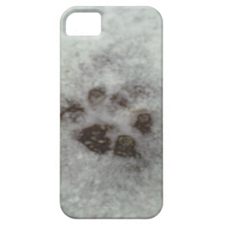 Animal tracks in the snow iPhone 5 covers