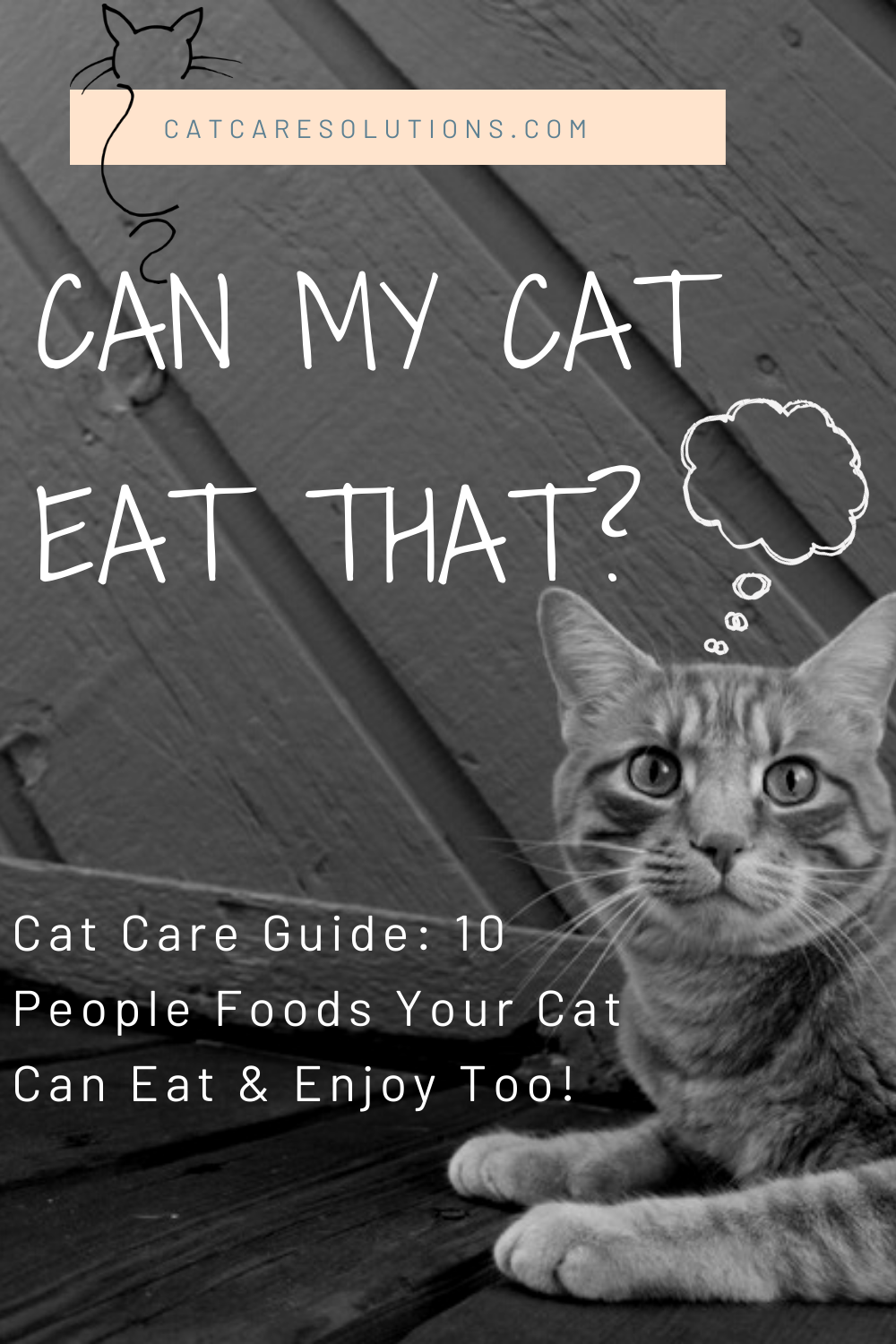 10 Human Foods Cats Can Eat And Enjoy In 2020 Cat Care Human Food For Cats Foods Cats Can Eat