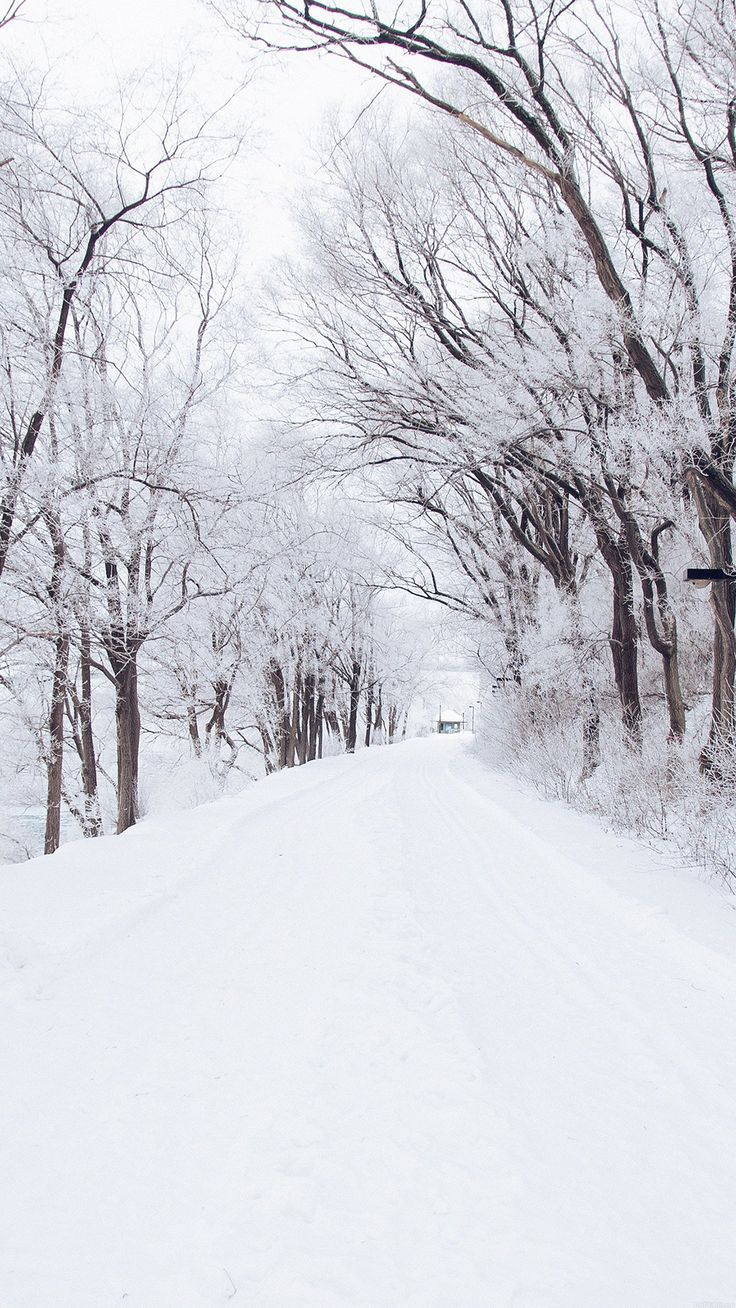 Winter-Road-Romantic-Nature-Snow-White-iPhone-6-plus-wallpaper-ilikewallpaper_co... #neiged#39;hiver