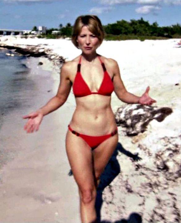 The samantha brown bikini gallery state affairs