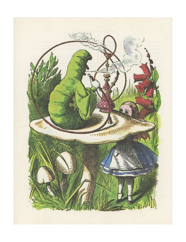 Image result for green caterpillar alice in wonderland