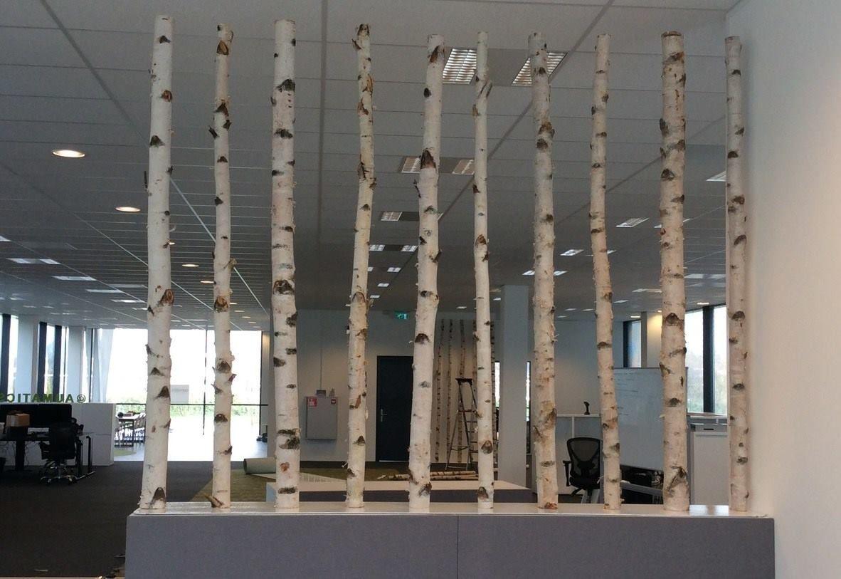 1000  images about berken stammen in het interieur on pinterest ...
