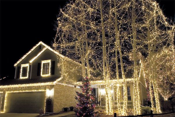 Images of christmas lights trees outdoor home design ideas images of christmas lights trees outdoor home design ideas mozeypictures Gallery
