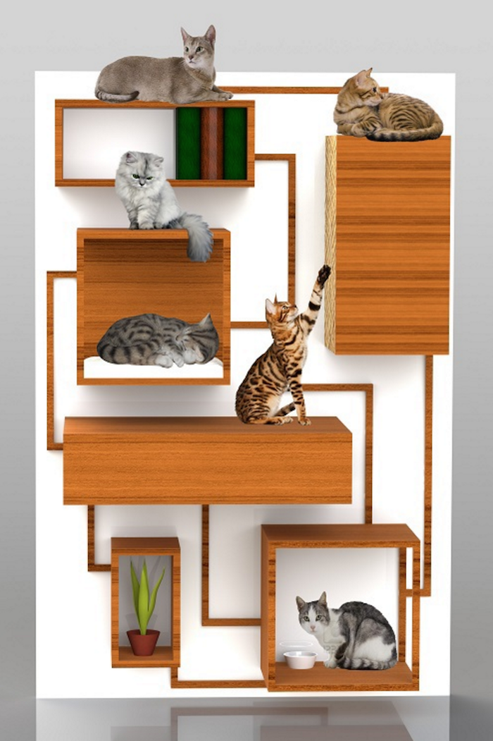 10 Amazing Cat Friendly Houses Modern Cat Furniture Cat Furniture Pet Furniture