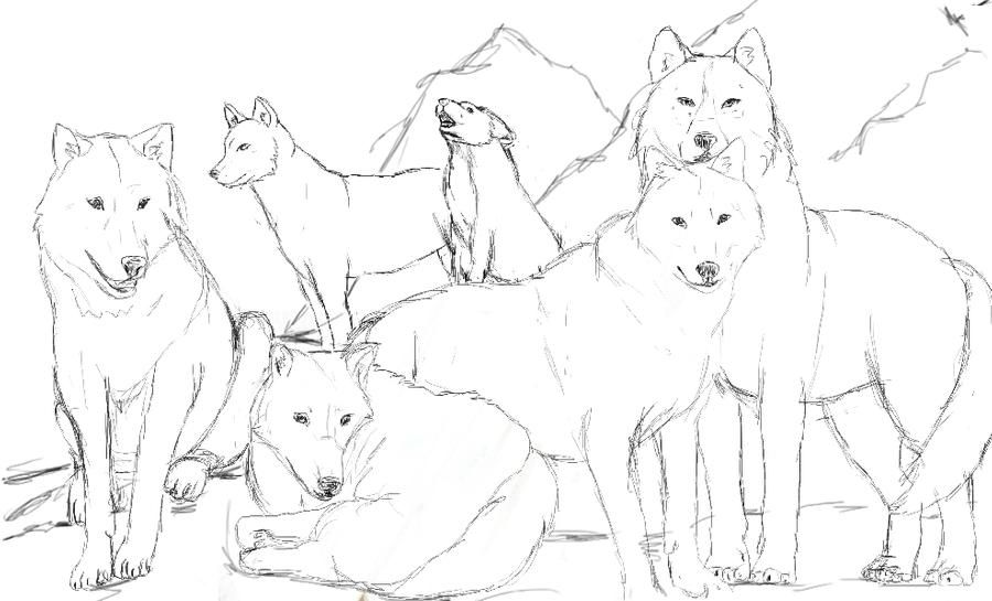 Wolves Pack Coloring Pages Coloring Pages Wolf Pack Ranks Wolf