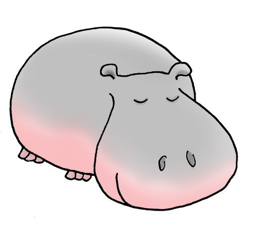 Realistuc Hippo Illustrations