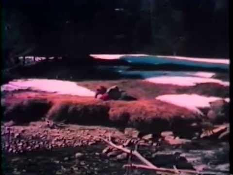 Os Sobreviventes Dos Andes 1976 Dublado Filmes Legendados Filmes Baixar Melhores Filmes