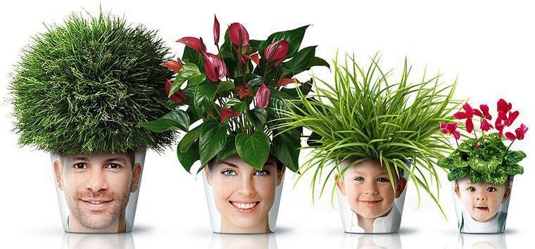 Um estilo moderno, criativo e divertido para colocar suas flores!
