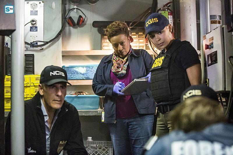 Pin von Kristine James auf NCIS New Orleans