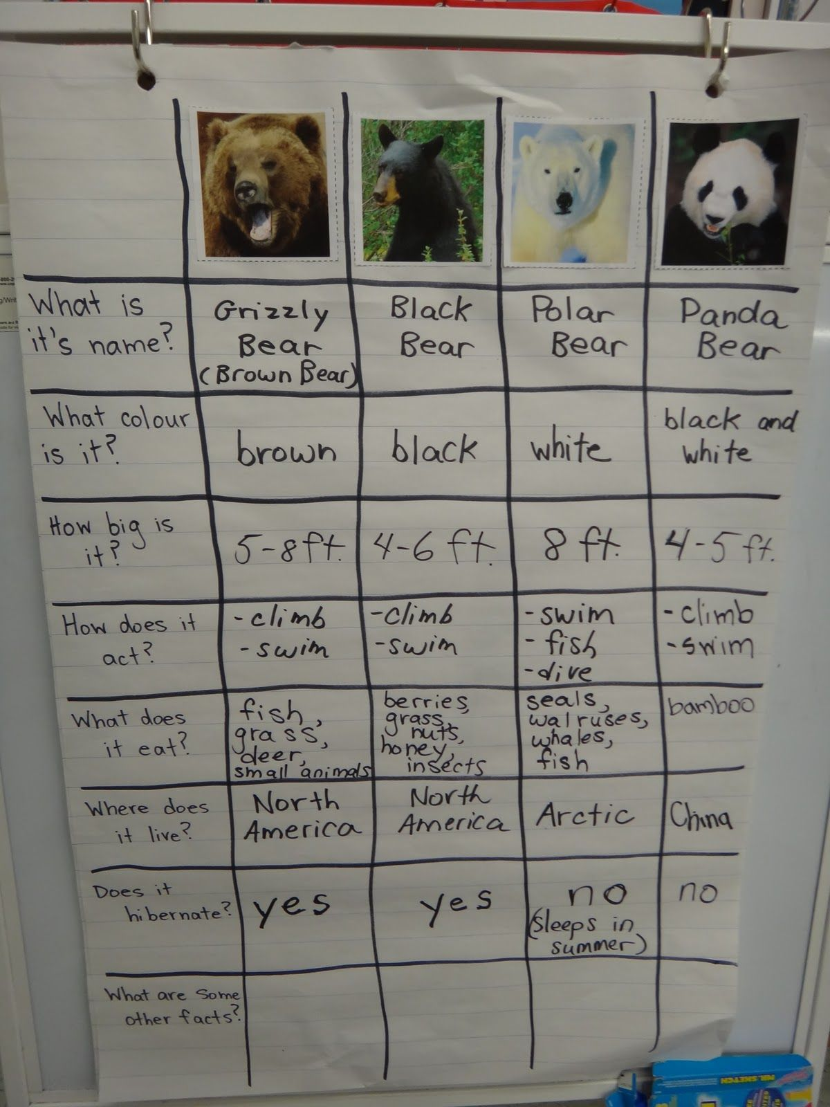 This Week Was Our Bear Hibernation Theme Lots Of Fun If You Have Not Read This Book You Must