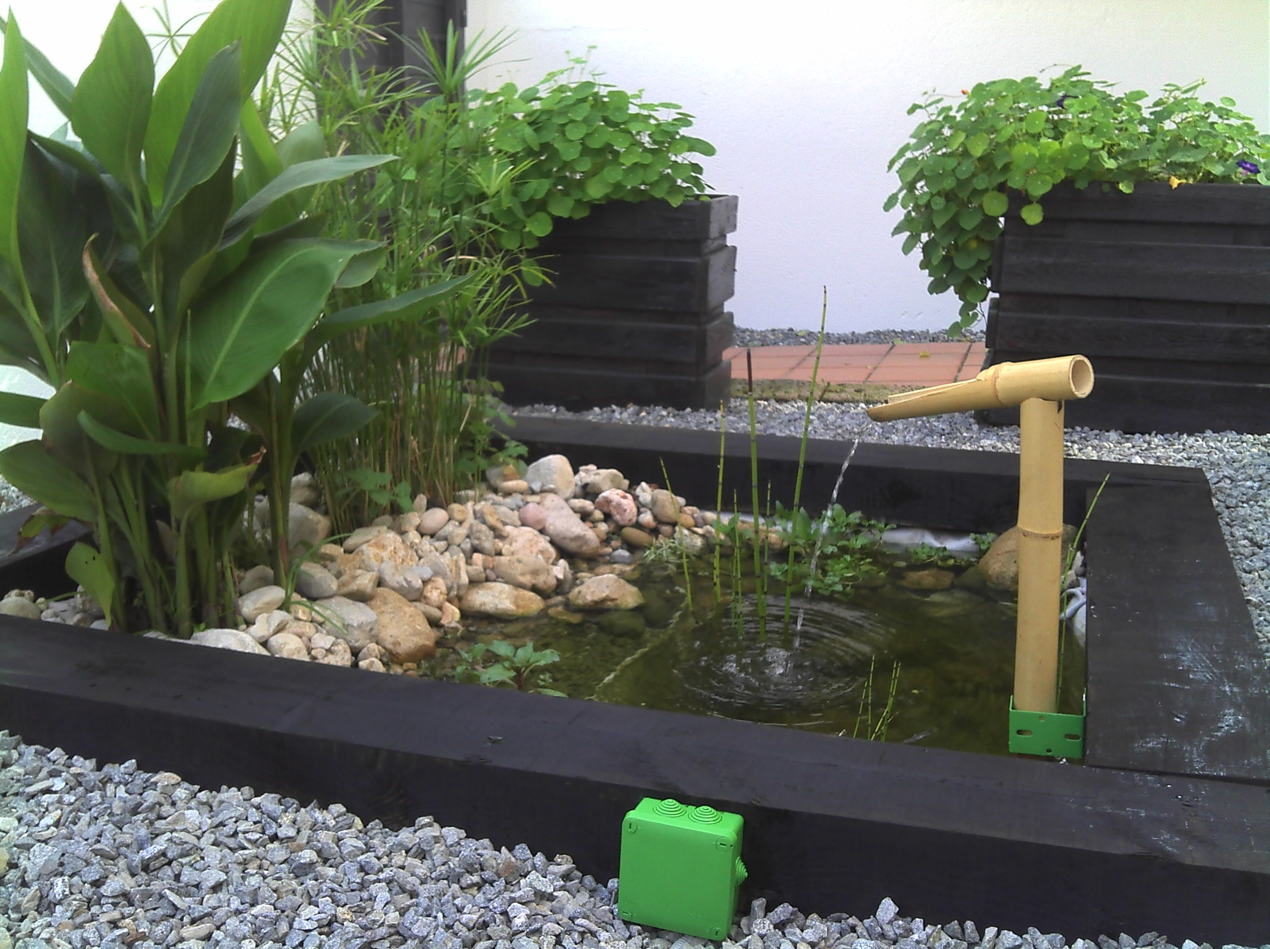 Pin de javier magdaleno en ideas para decorar un hogar for Estanques para peces ornamentales