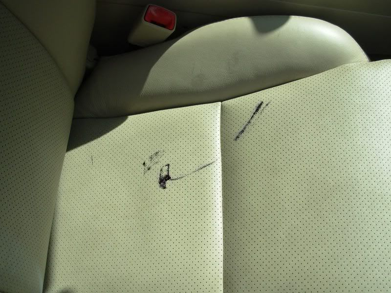All Natural Leather Seat Cleaning Solutions Olive Oil