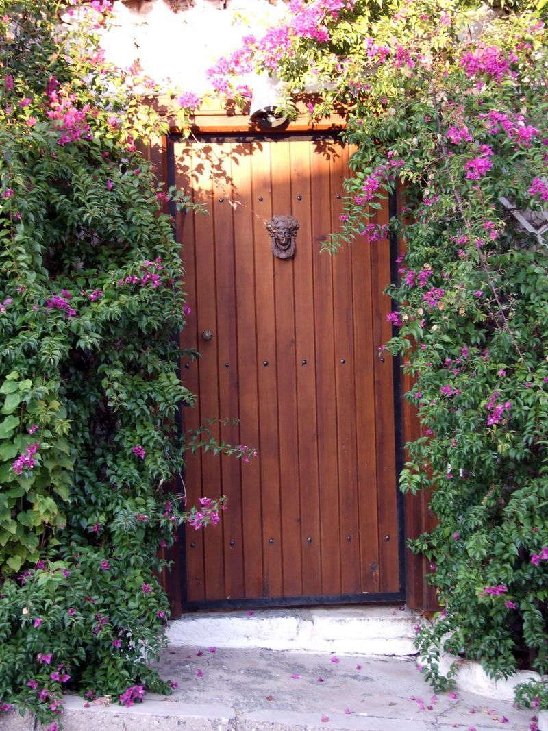 Wooden Garden Door For The Home Garden Doors Wooden