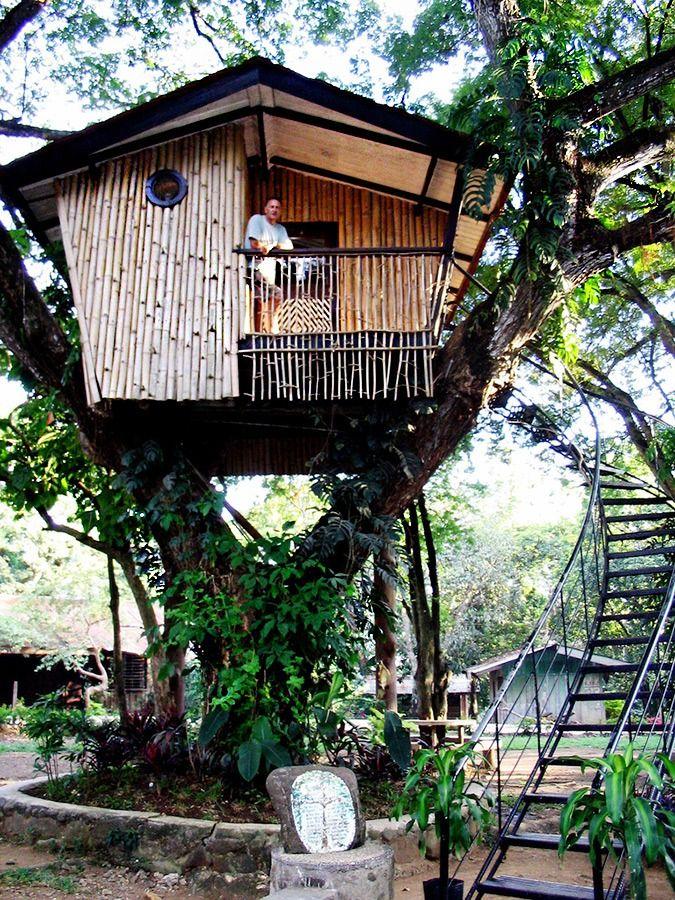 Pasonanca Park Tree House Philippines Love The Stairs