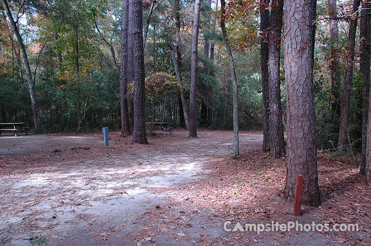 Myrtle Beach State Park Campsite Photos, Camping Info