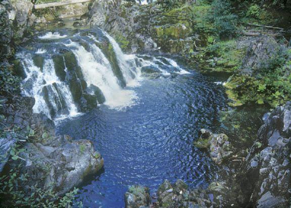 Oregon Hikes - Opal Creek