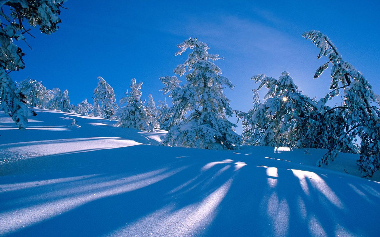 Snow Scenes Winter Wallpaper Hd Winter Scenery Winter Nature