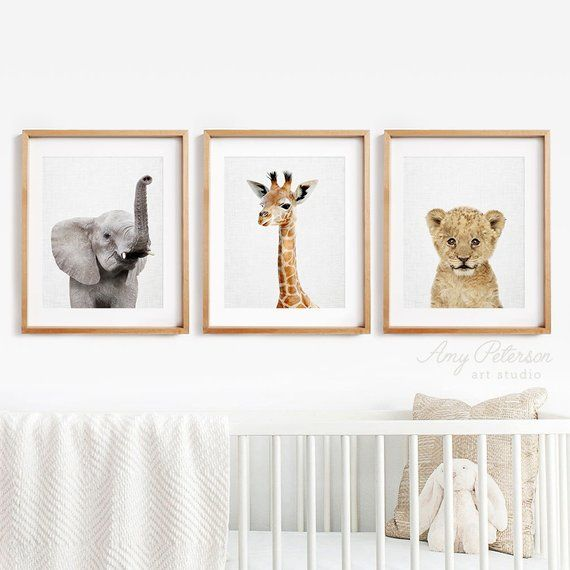 Safari Baby Animal Prints For Nursery Decor Baby Animal Etsy Animal Wall Art Nursery Baby Animal Prints Baby Animal Nursery