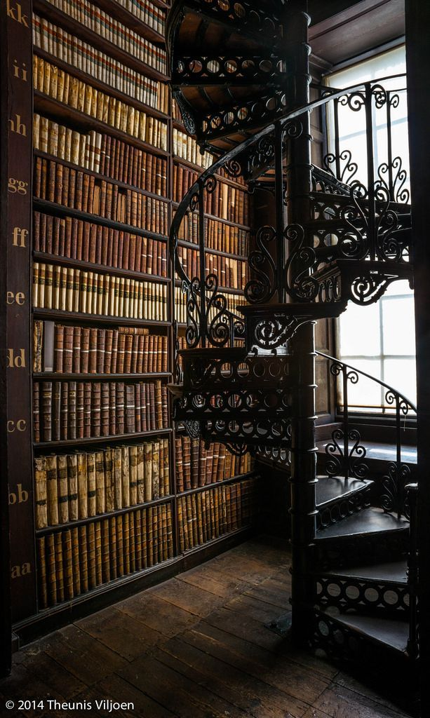 wanderthewood: Der lange Raum  Trinity College Old Library Dublin I