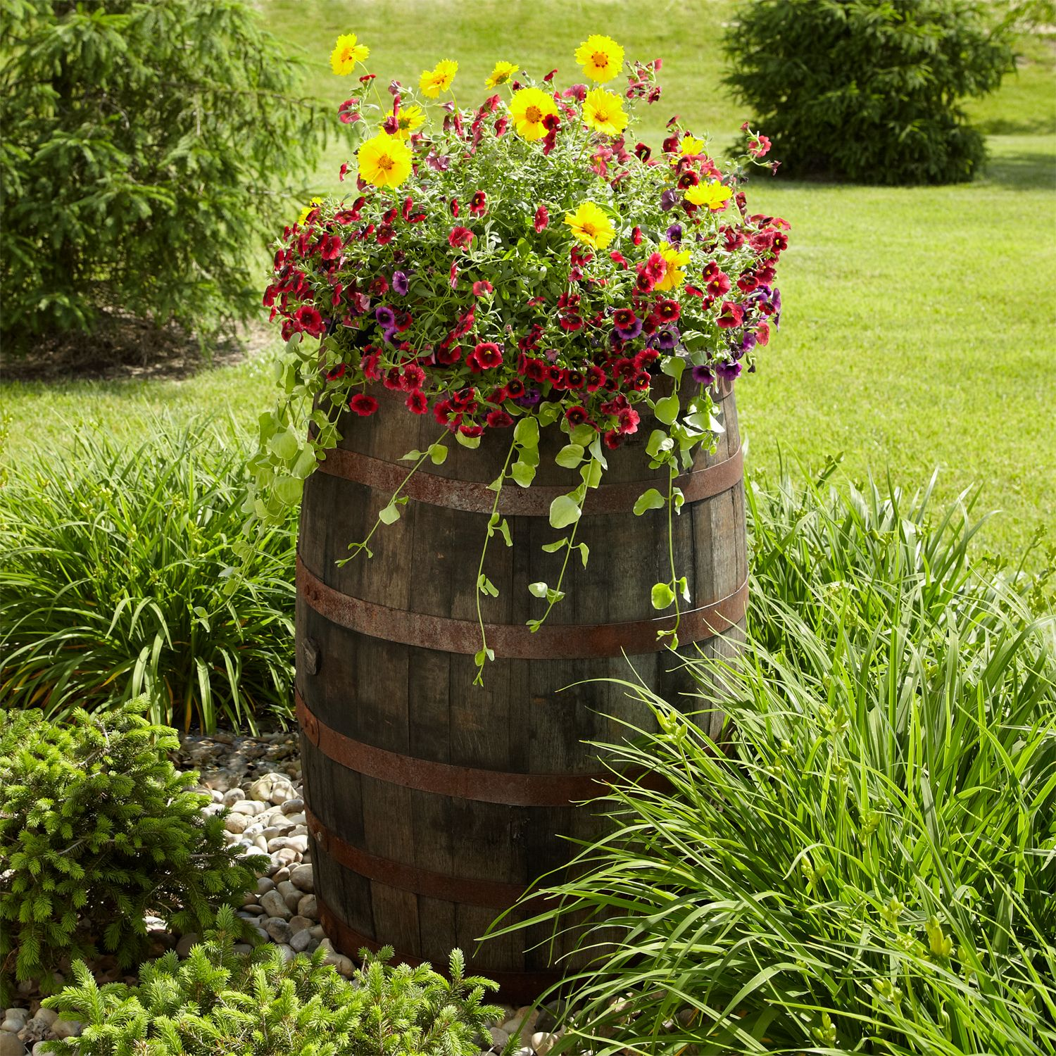 Outdoor Accessories Signature Hardware Whiskey Barrel Planter Barrel Planter Barrel Flowers
