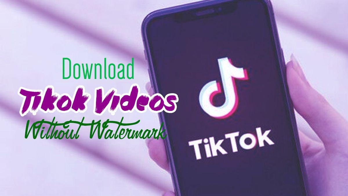 Download Tiktok Video Without Watermark Video Popular Apps Download