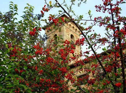 La Chiesa di Maiano