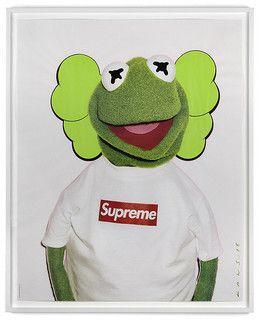 d3e0f2f593a Kaws Kermit Terry Richardson Supreme