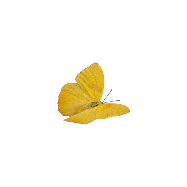 Butterfly Clip Art Butterfly Drawing Butterfly Clip Art Butterfly Painting Butterfly Drawing