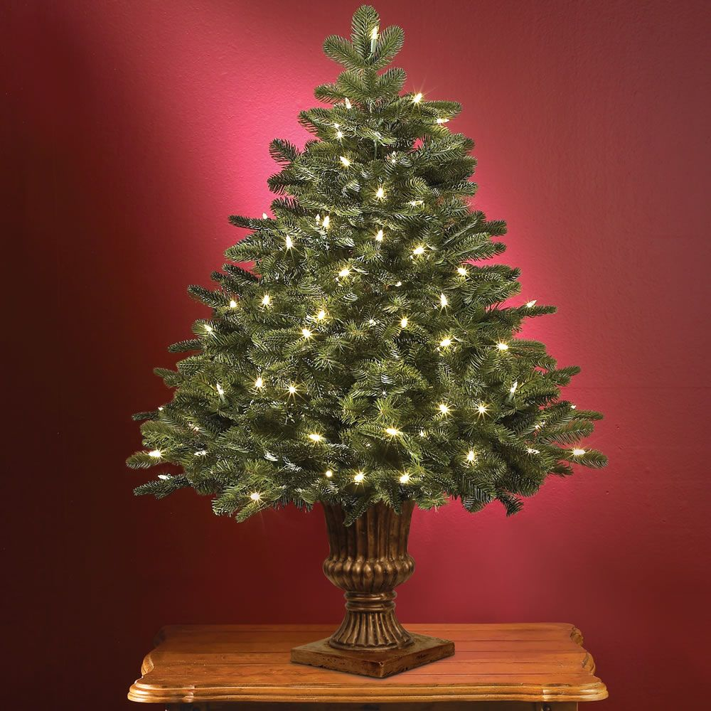 The World's Best Tabletop Prelit Noble Fir - Hammacher ...