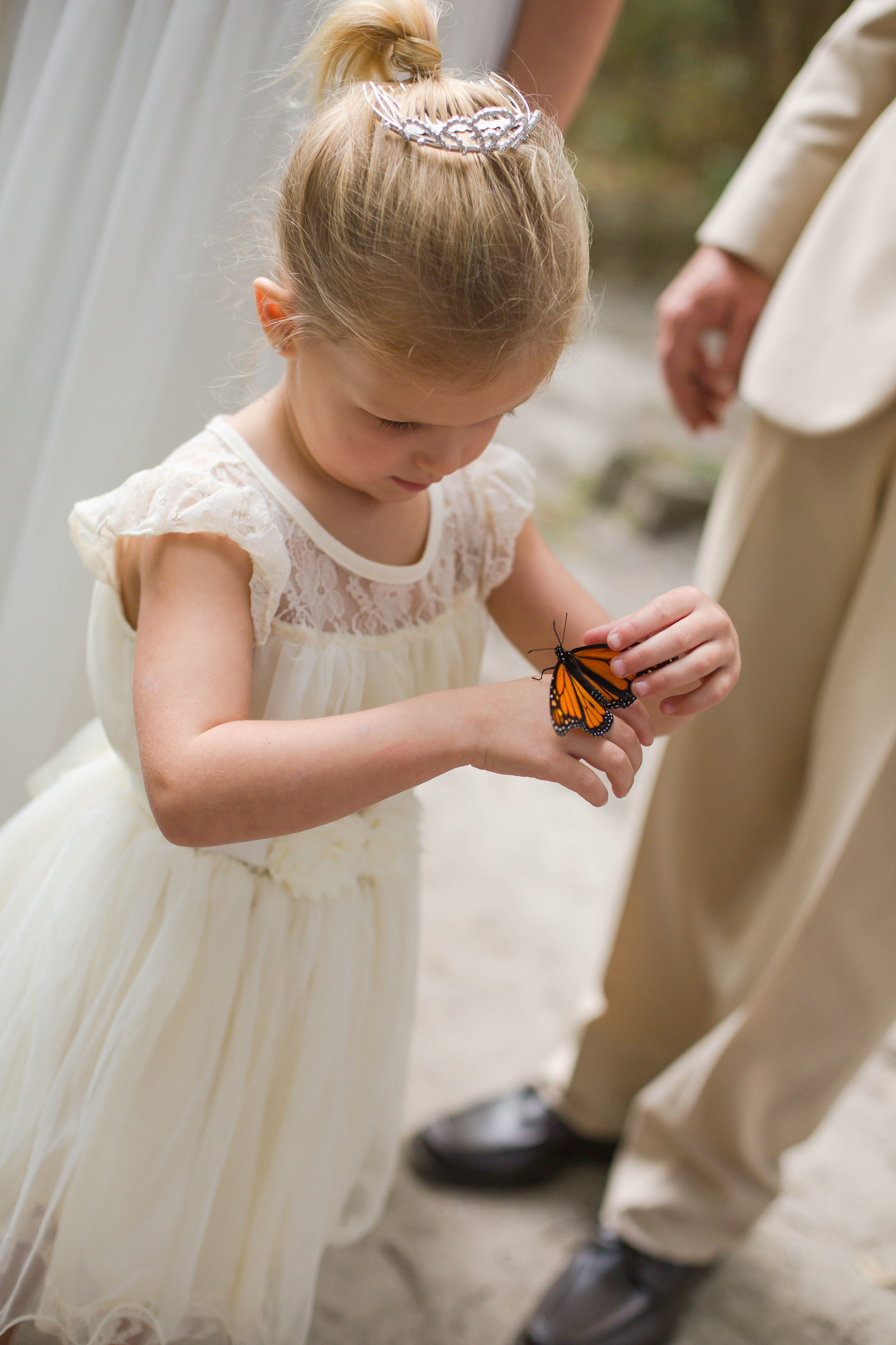 Butterfly release in honor of lost loved ones! Woodland