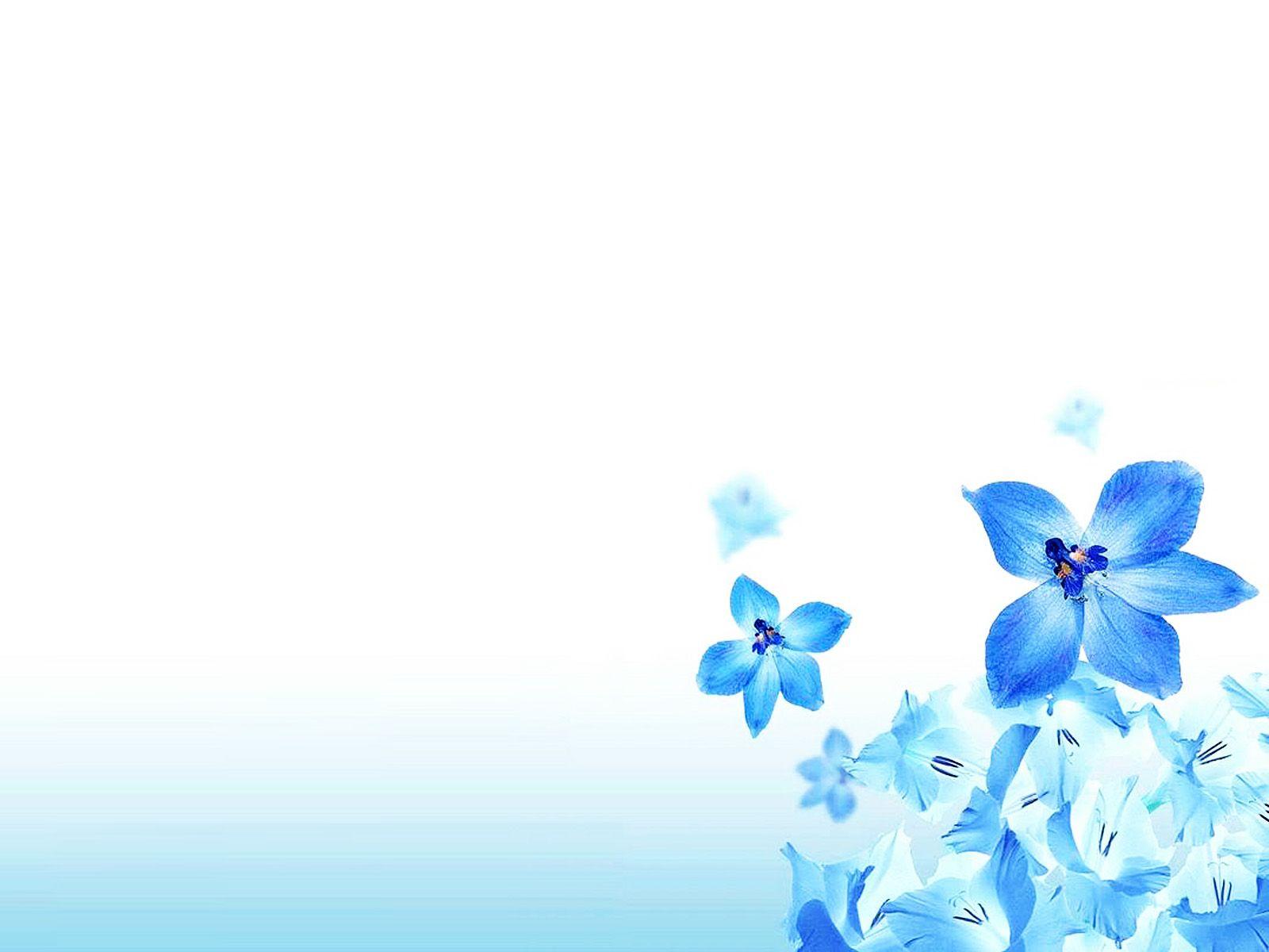 Christian Flowers Backgrounds Jpg 1600 1200 Flower Backgrounds Bubbles Wallpaper Floral Border Design