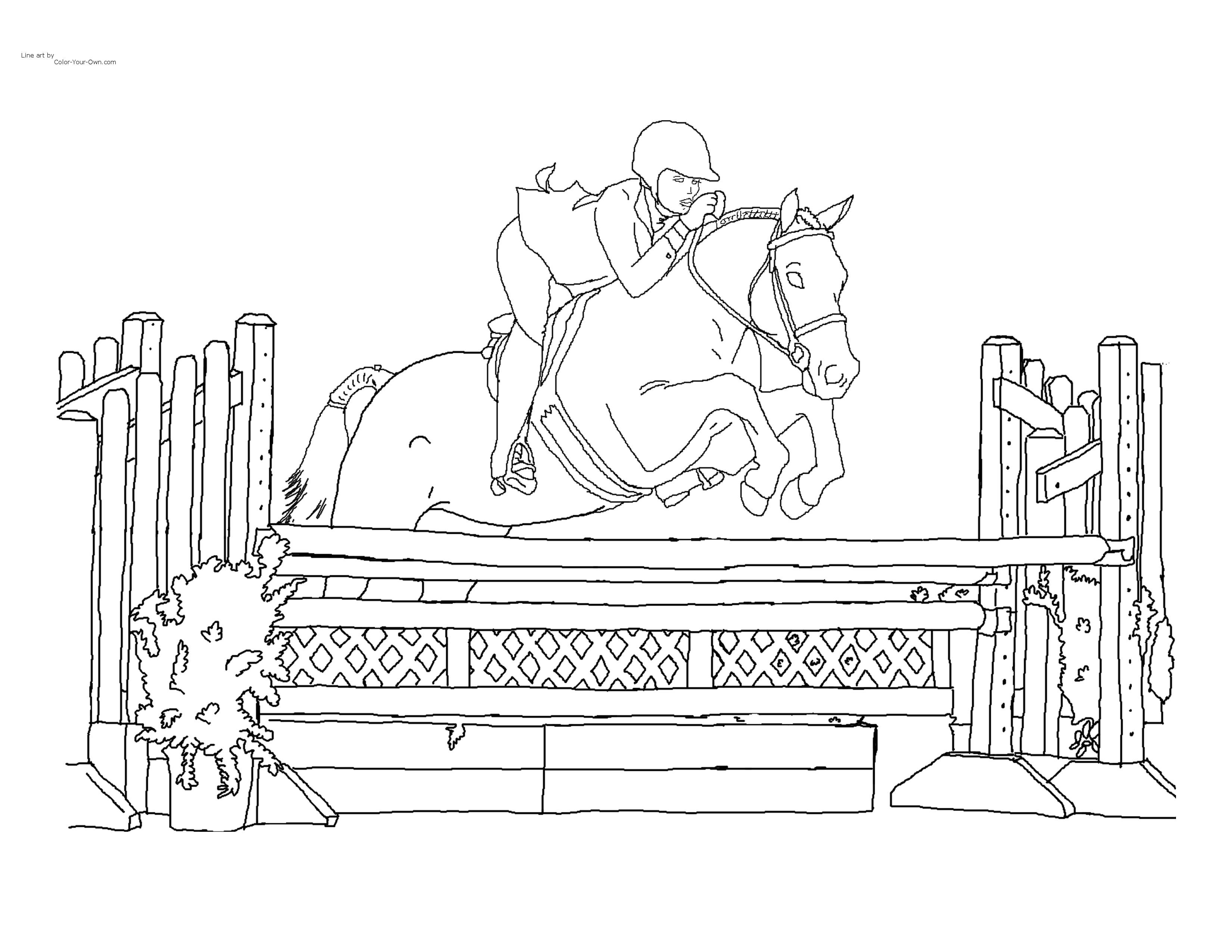 Free Horse Pictures To Color | Click here for the free printable ...