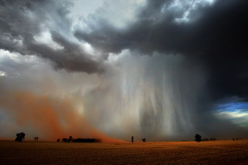 Microburst. Localized downward burst of air creating divergent winds.