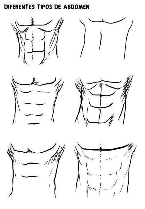 How To Draw Anime Abs : anime, LY😈, Anime, Drawings, Tutorials,, Drawing, Sketches,, Sketches