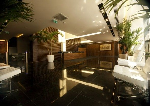 Natural Ecological Interior Design with Green Plants Decor Office