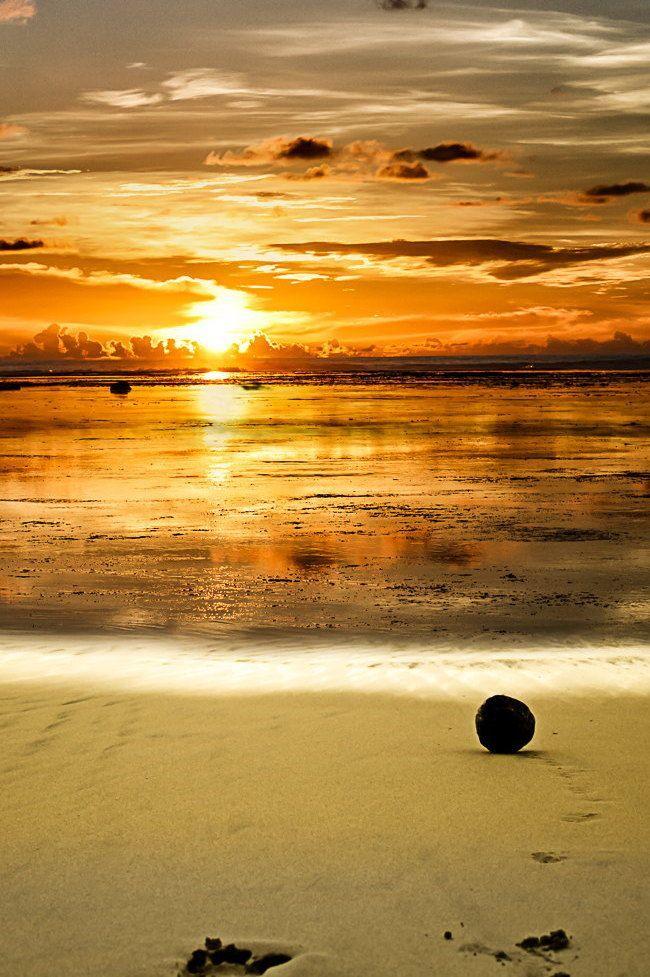 Heavenly Beach Sunset 暮光之城 美丽鸟